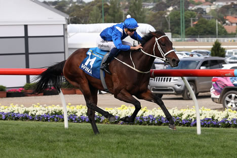 Search Results For Quot Winx Quot 171 Breeding Racing